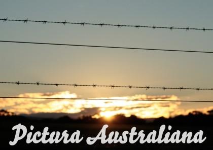 Pictura-Australiana-1024x721